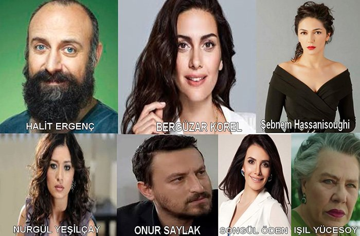 you are my country (vatanim sensin) cast