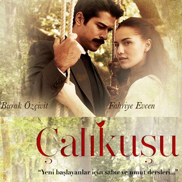 Wren Lovebird Calikusu Turkish tv series Poster